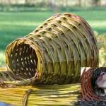 Eendenbroedkorf